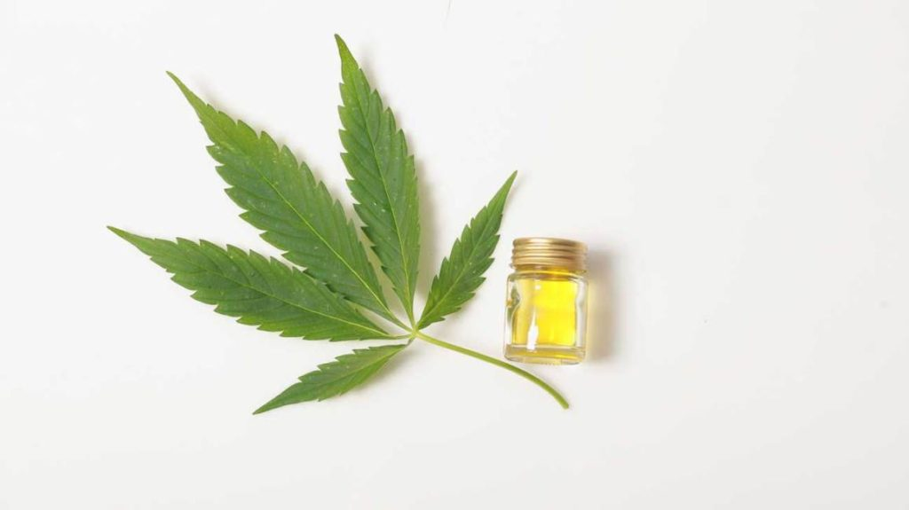 starting cbd business